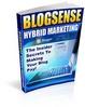 Thumbnail BlogSense Hybrid Marketing - Insider Secrets To Making Your